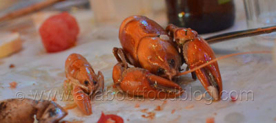 The Boil, Yabbies with Creole Butter sauce at House of Crabs