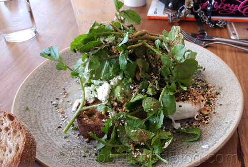 Poached eggs, avocado, feta, parsley, cress, lemon, dukkah on toast - $16.90