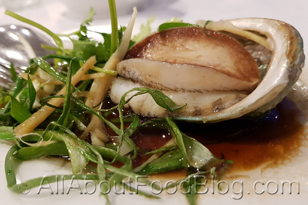 Baby Abalone from Hung Cheung